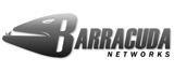 barracuda-network
